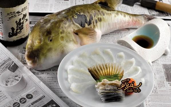 ماهی فوگو